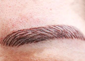 training-tattoo-standard-brow-microblading